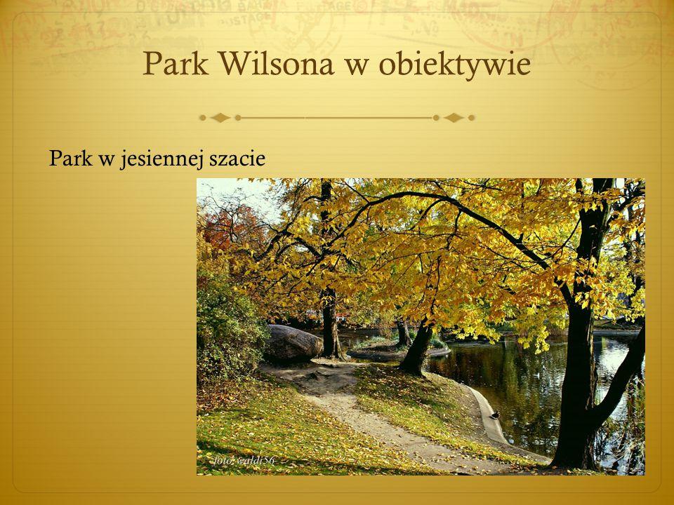 Park Wilsona w obiektywie Park w jesiennej szacie