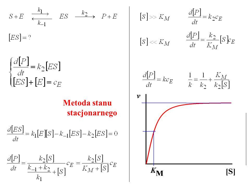 Stała Michaelisa-Menten – stężenie substratu, przy którym szybkość reakcji jest równa połowie szybkości maksymalnej Metoda stanu stacjonarnego