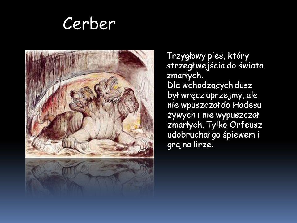 Cerber Trzygłowy pies, który strzegł wejścia do świata zmarłych. Dla wchodzących dusz był wręcz uprzejmy, ale nie wpuszczał do Hadesu żywych i nie wyp