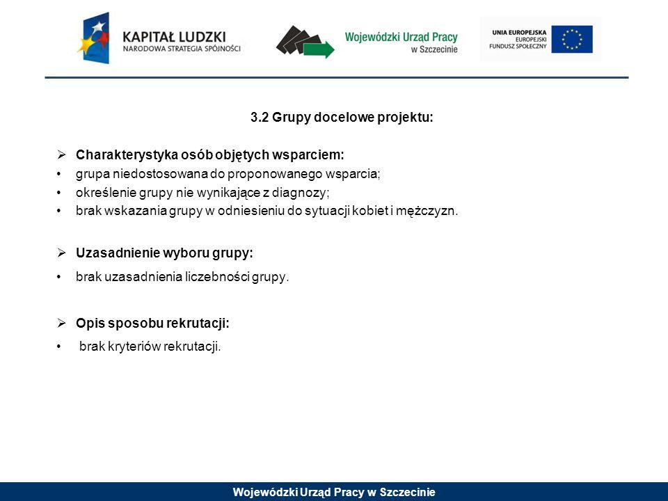 Wojewódzki Urząd Pracy w Szczecinie 3.2 Grupy docelowe projektu:  Charakterystyka osób objętych wsparciem: grupa niedostosowana do proponowanego wspa