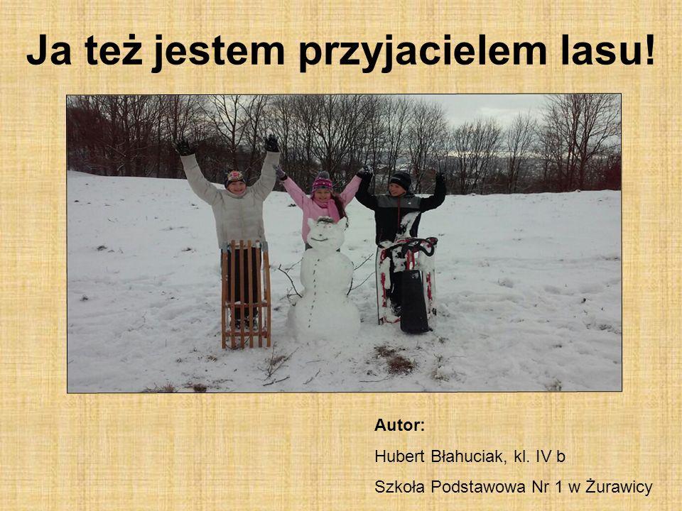 Ja też jestem przyjacielem lasu! Autor: Hubert Błahuciak, kl. IV b Szkoła Podstawowa Nr 1 w Żurawicy