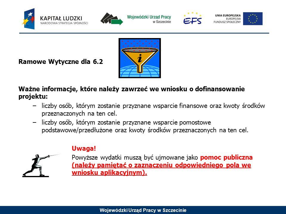 Wojewódzki Urząd Pracy w Szczecinie Ramowe Wytyczne dla 6.2 Ważne informacje, które należy zawrzeć we wniosku o dofinansowanie projektu: –liczby osób,