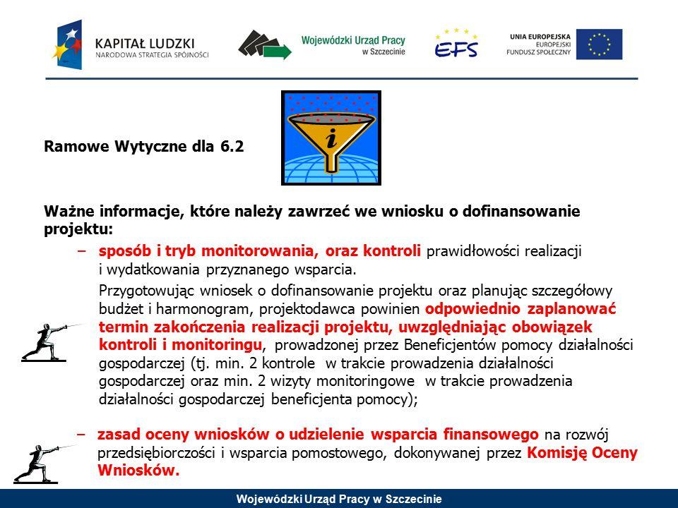 Wojewódzki Urząd Pracy w Szczecinie Ramowe Wytyczne dla 6.2 Ważne informacje, które należy zawrzeć we wniosku o dofinansowanie projektu: –sposób i tryb monitorowania, oraz kontroli prawidłowości realizacji i wydatkowania przyznanego wsparcia.