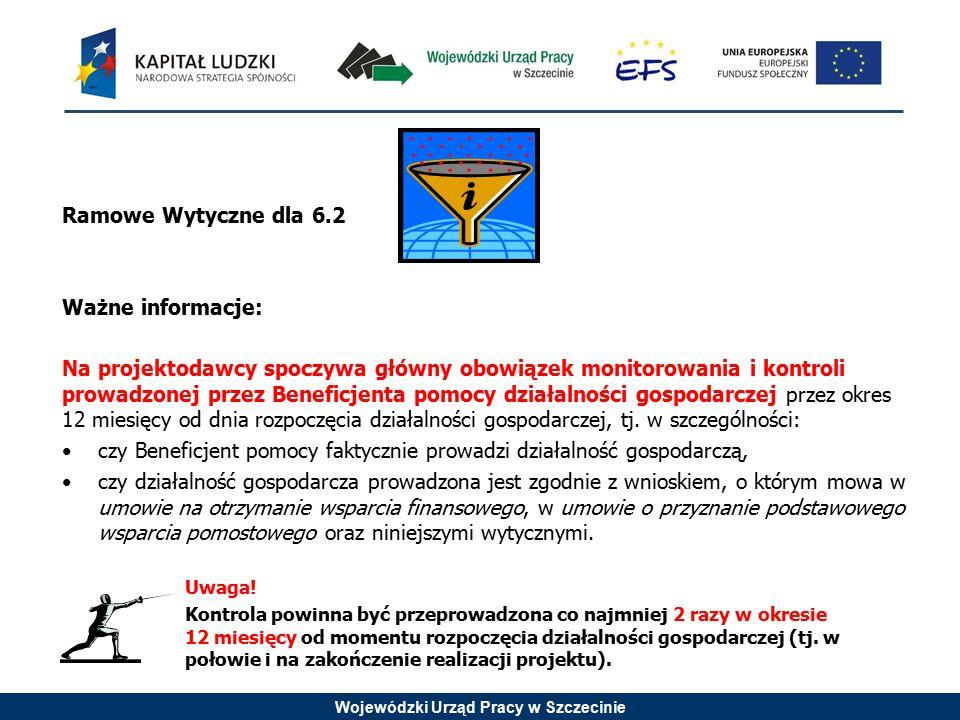 Wojewódzki Urząd Pracy w Szczecinie Ramowe Wytyczne dla 6.2 Ważne informacje: Na projektodawcy spoczywa główny obowiązek monitorowania i kontroli prow