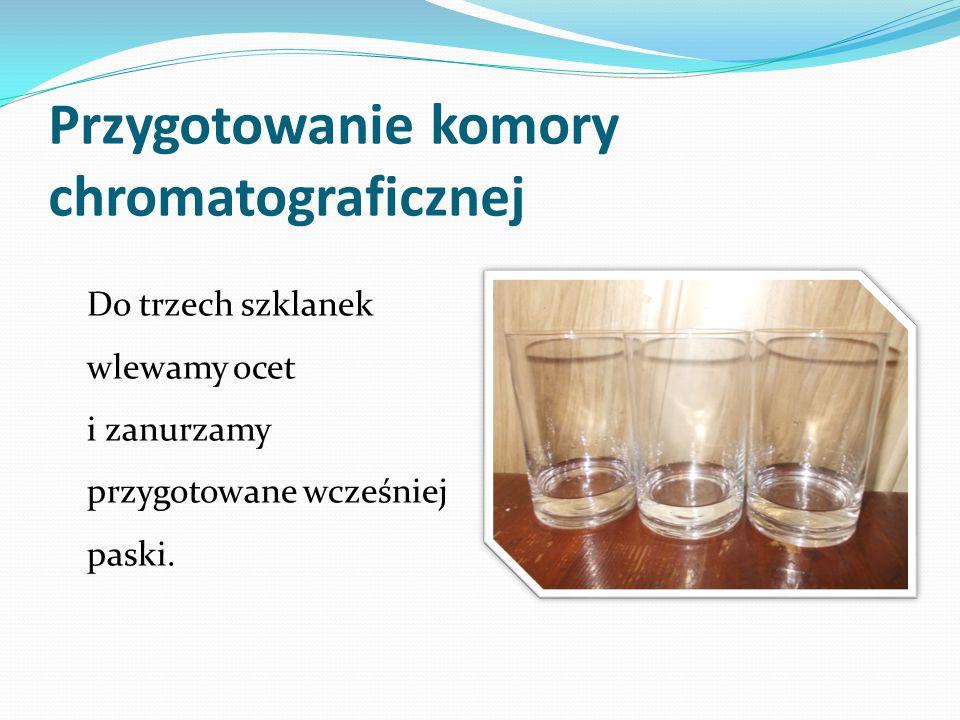 Przygotowanie komory chromatograficznej Do trzech szklanek wlewamy ocet i zanurzamy przygotowane wcześniej paski.