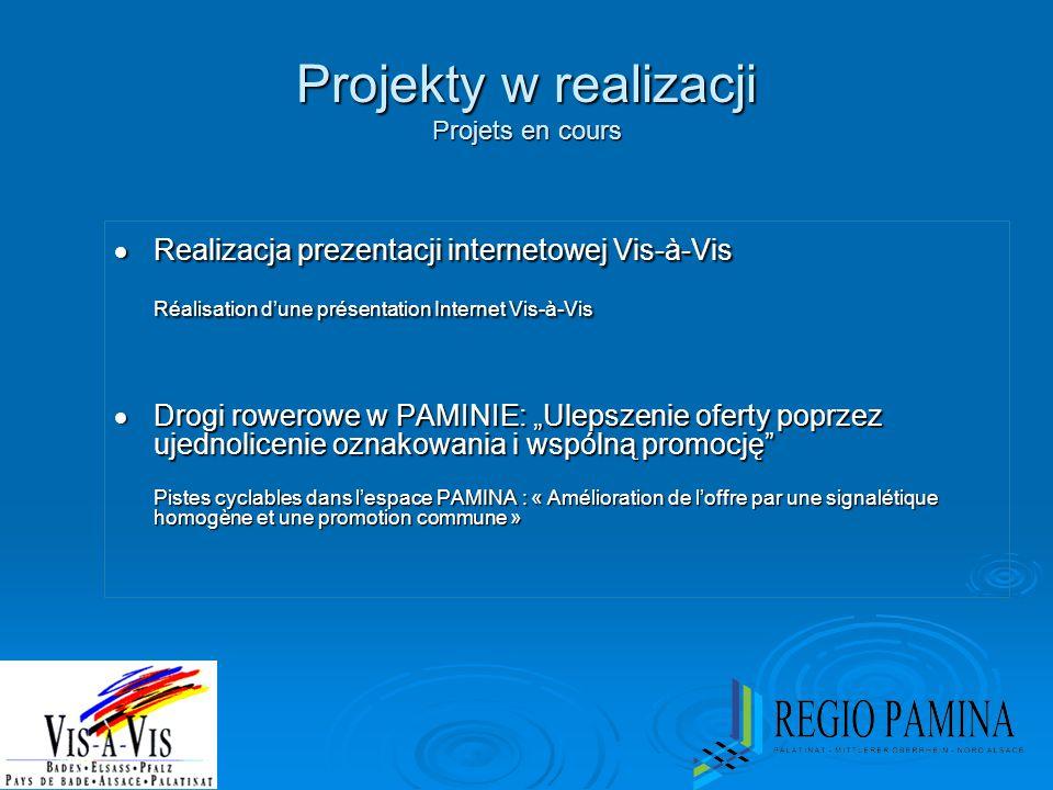 Projekty w realizacji Projets en cours  Realizacja prezentacji internetowej Vis-à-Vis Réalisation d'une présentation Internet Vis-à-Vis  Drogi rower