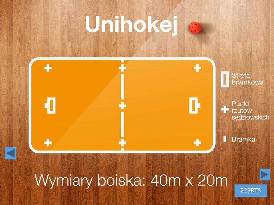 Unihokej – białe litery na tle drewnianej podłogi. Obok tytułu piłka do unihokeja 223RTS