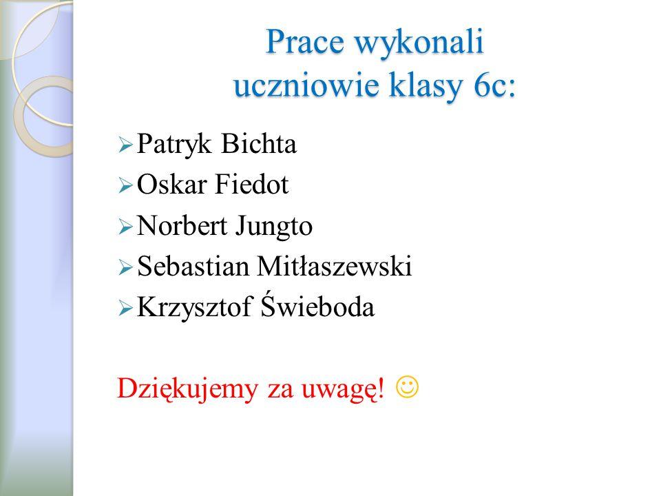 Prace wykonali uczniowie klasy 6c:  Patryk Bichta  Oskar Fiedot  Norbert Jungto  Sebastian Mitłaszewski  Krzysztof Świeboda Dziękujemy za uwagę!