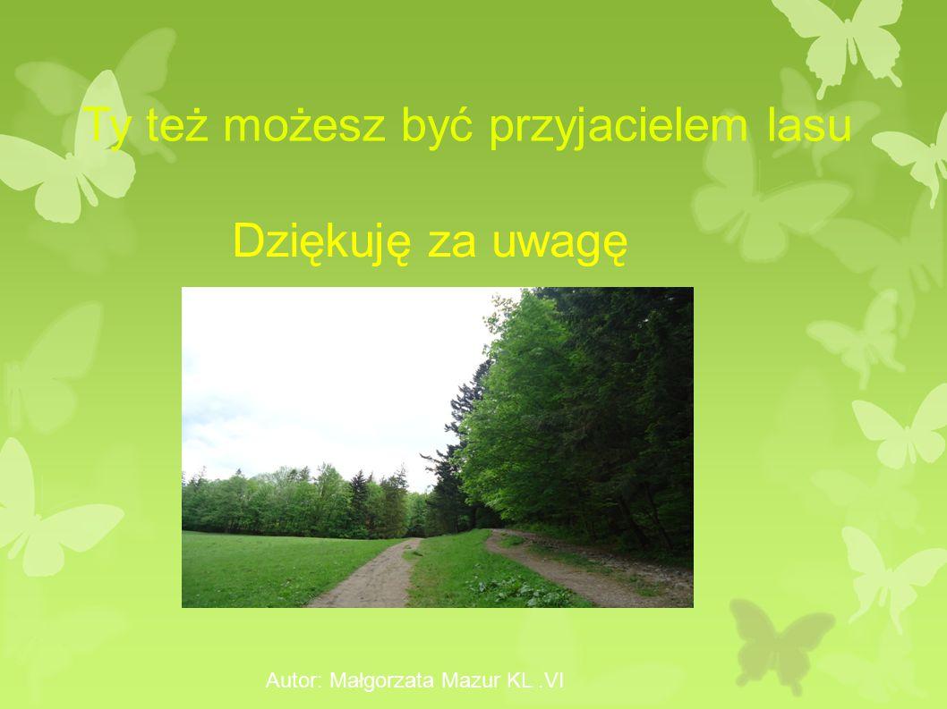 Autor: Małgorzata Mazur KL.VI Dziękuję za uwagę Ty też możesz być przyjacielem lasu