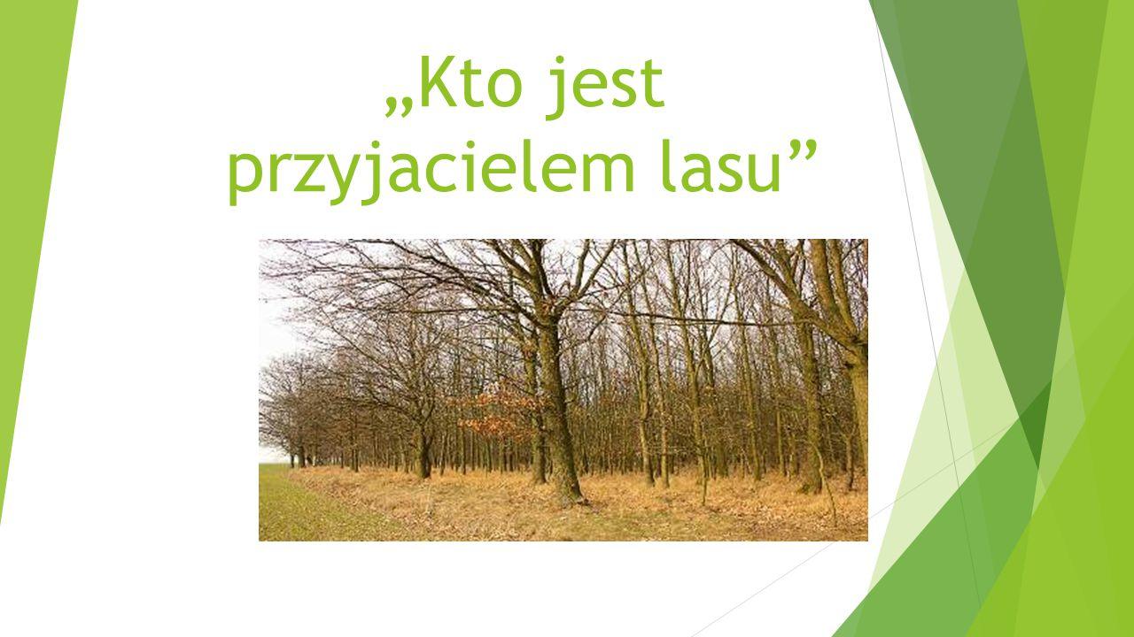 """""""Kto jest przyjacielem lasu"""""""