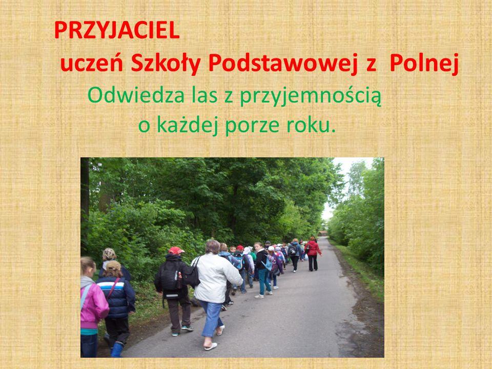 PRZYJACIEL uczeń Szkoły Podstawowej z Polnej Odwiedza las z przyjemnością o każdej porze roku.