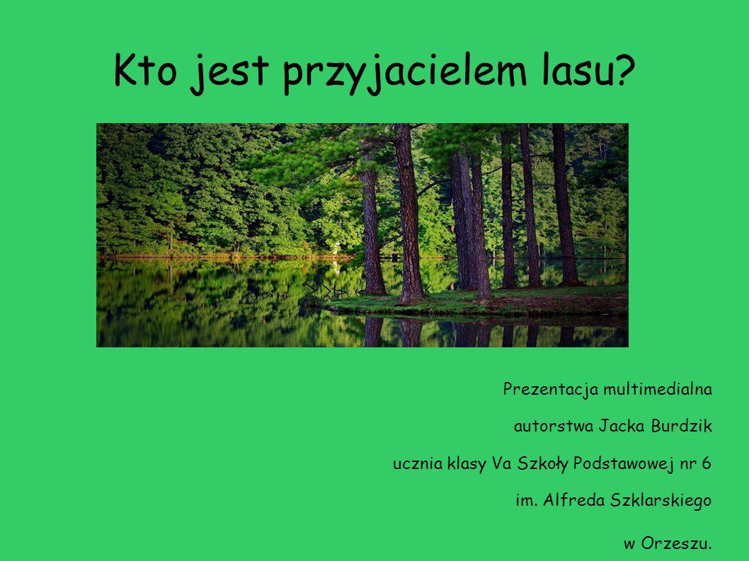 Kto jest przyjacielem lasu? Prezentacja multimedialna autorstwa Jacka Burdzik ucznia klasy Va Szkoły Podstawowej nr 6 im. Alfreda Szklarskiego w Orzes