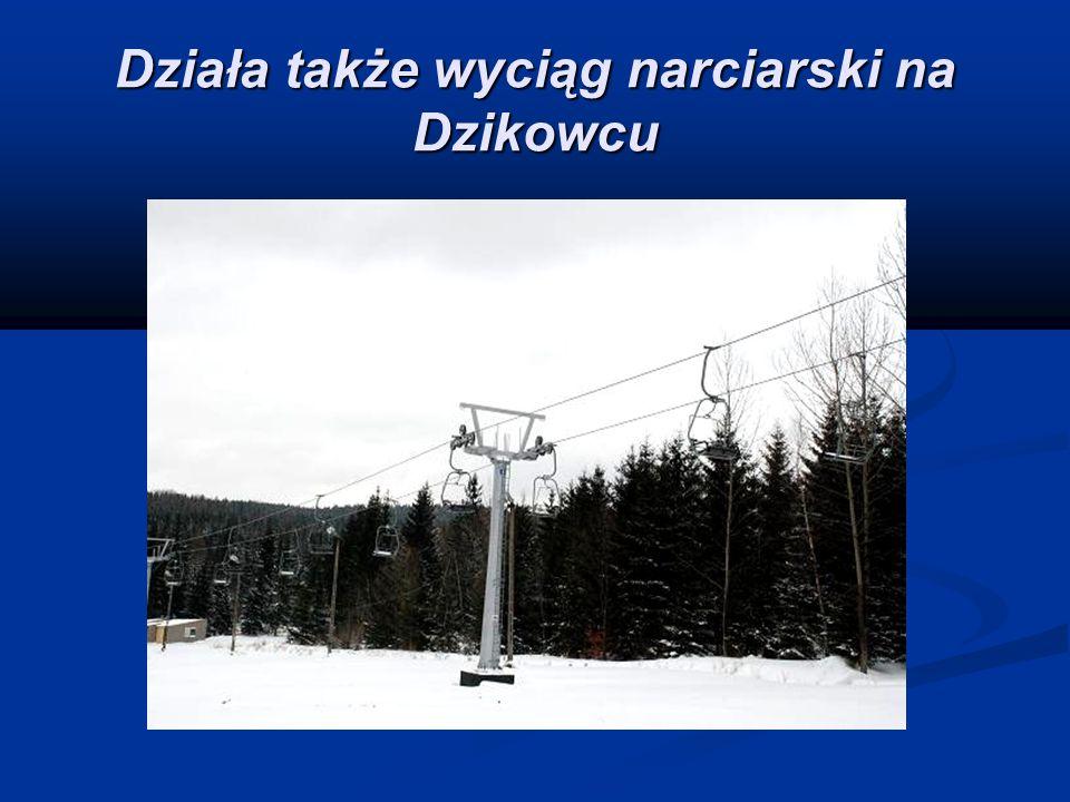 Działa także wyciąg narciarski na Dzikowcu