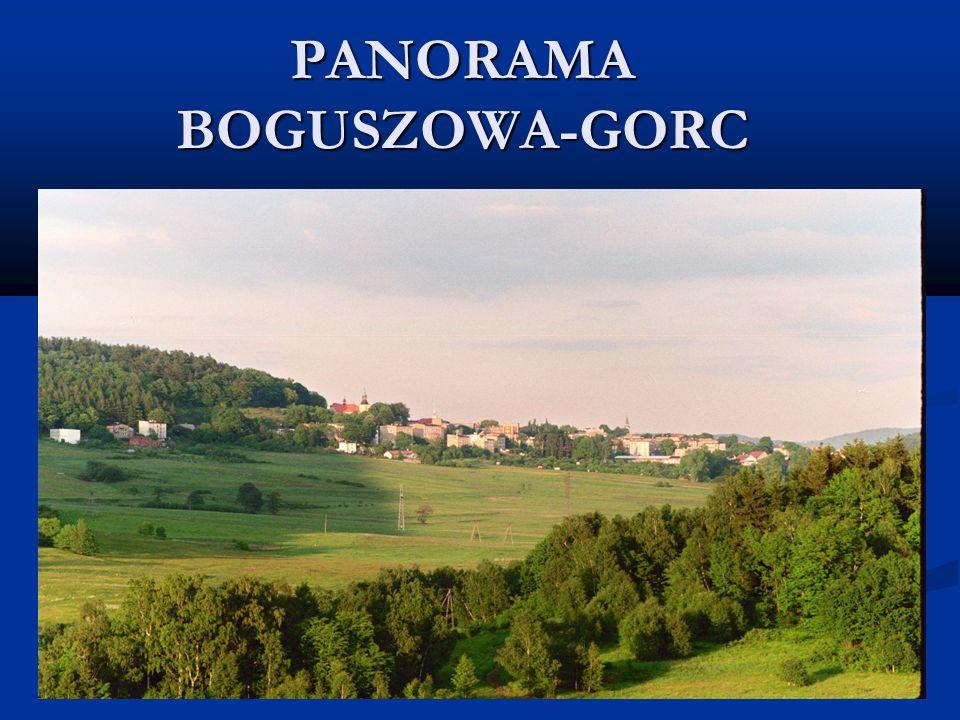 PANORAMA BOGUSZOWA-GORC