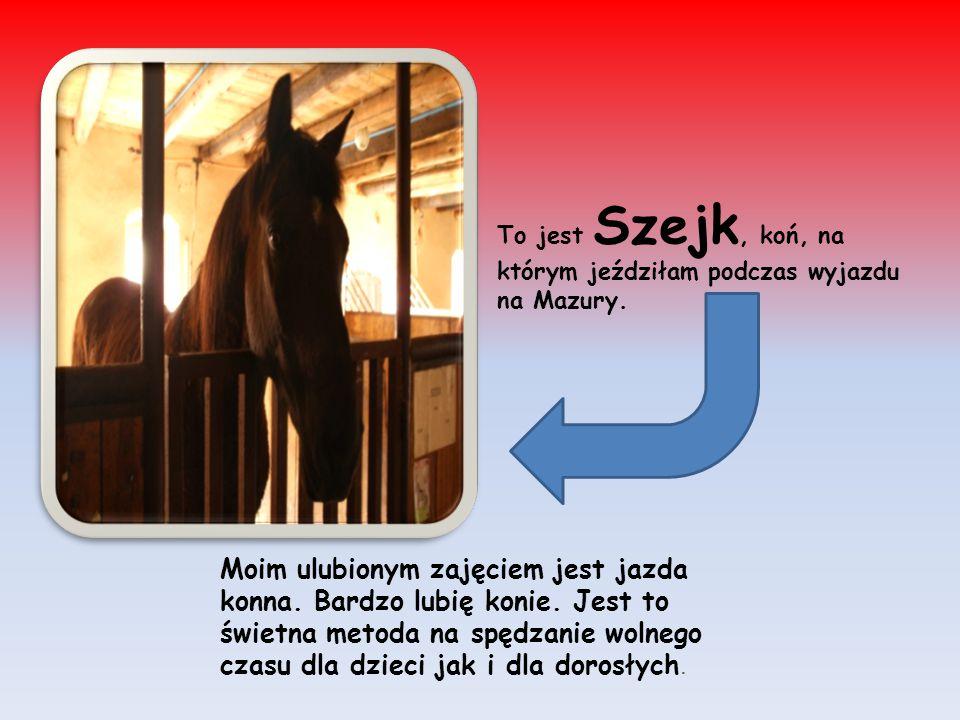 Moim ulubionym zajęciem jest jazda konna. Bardzo lubię konie. Jest to świetna metoda na spędzanie wolnego czasu dla dzieci jak i dla dorosłych. To jes