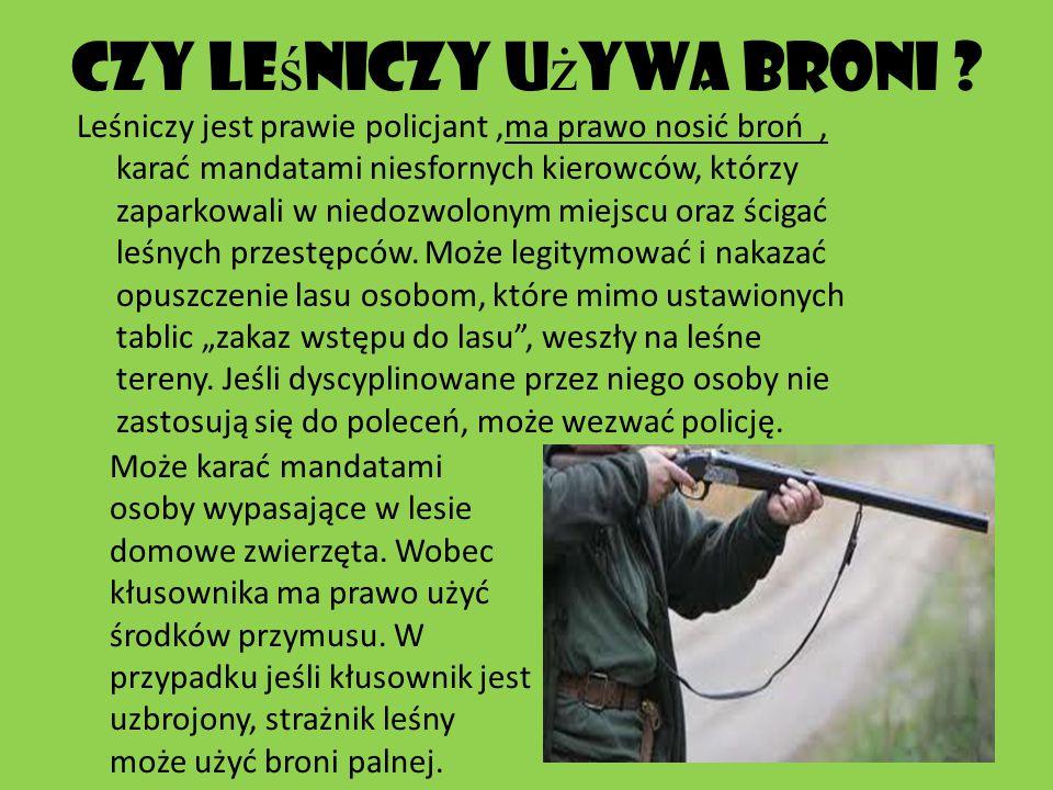 Lasy Pa Ń stwowe Lasy Pa ń stwowe prowadz ą gospodark ę le ś n ą dbaj ą c przy tym o stan zarz ą dzanych terenów, o zachowanie walorów przyrodniczych i krajobrazowych na terenie polski.