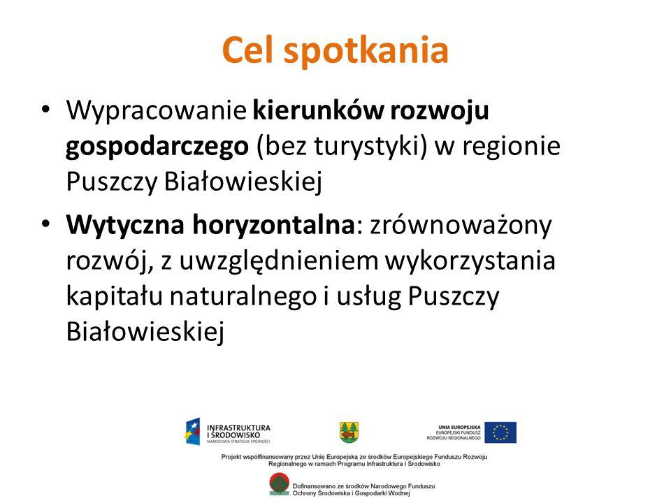 Cel spotkania Wypracowanie kierunków rozwoju gospodarczego (bez turystyki) w regionie Puszczy Białowieskiej Wytyczna horyzontalna: zrównoważony rozwój, z uwzględnieniem wykorzystania kapitału naturalnego i usług Puszczy Białowieskiej