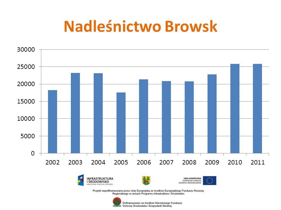 Nadleśnictwo Browsk