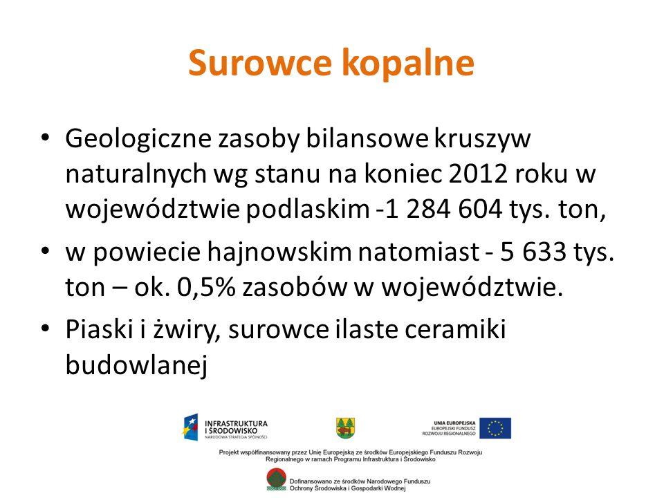 Surowce kopalne Geologiczne zasoby bilansowe kruszyw naturalnych wg stanu na koniec 2012 roku w województwie podlaskim -1 284 604 tys.