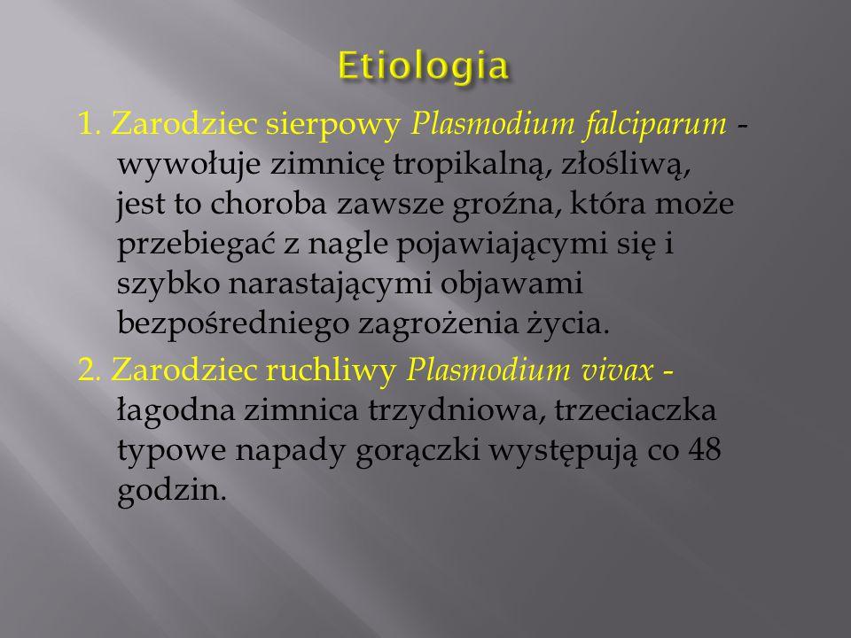 1. Zarodziec sierpowy Plasmodium falciparum - wywołuje zimnicę tropikalną, złośliwą, jest to choroba zawsze groźna, która może przebiegać z nagle poja