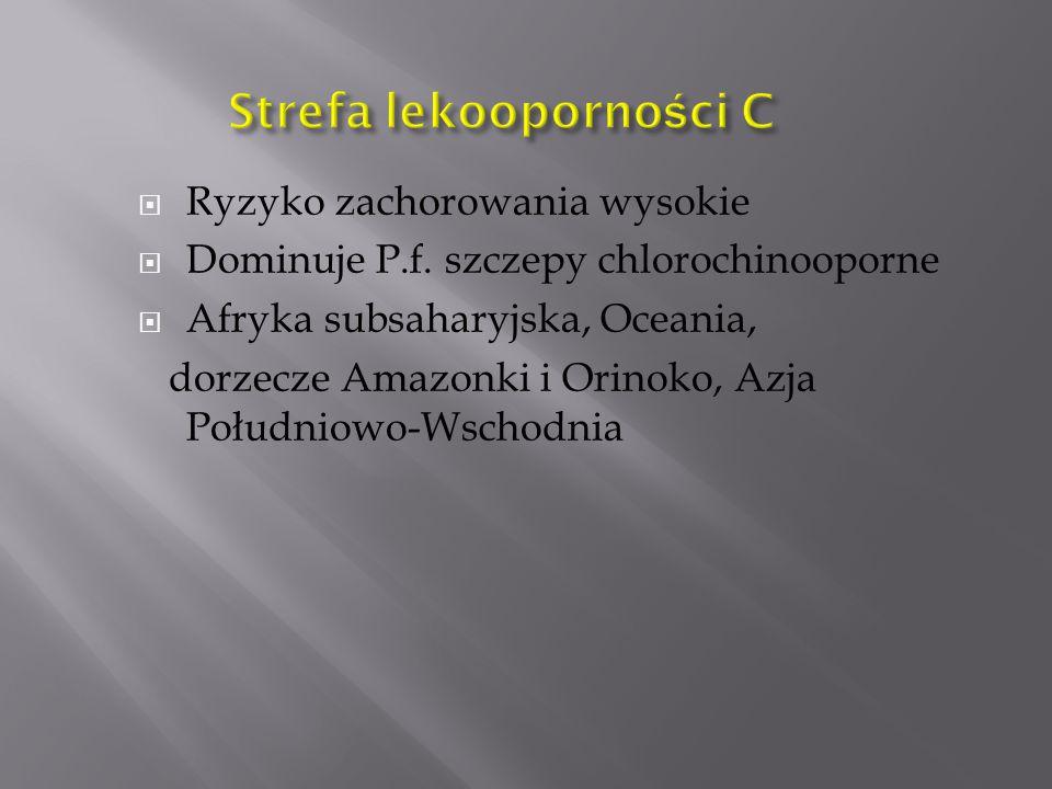  Ryzyko zachorowania wysokie  Dominuje P.f. szczepy chlorochinooporne  Afryka subsaharyjska, Oceania, dorzecze Amazonki i Orinoko, Azja Południowo-