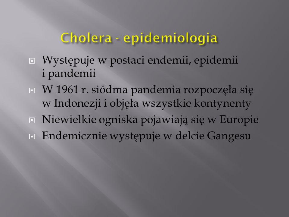  Występuje w postaci endemii, epidemii i pandemii  W 1961 r. siódma pandemia rozpoczęła się w Indonezji i objęła wszystkie kontynenty  Niewielkie o