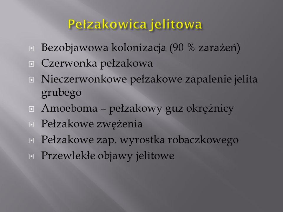  Bezobjawowa kolonizacja (90 % zarażeń)  Czerwonka pełzakowa  Nieczerwonkowe pełzakowe zapalenie jelita grubego  Amoeboma – pełzakowy guz okrężnicy  Pełzakowe zwężenia  Pełzakowe zap.