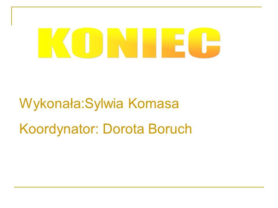 Wykonała:Sylwia Komasa Koordynator: Dorota Boruch