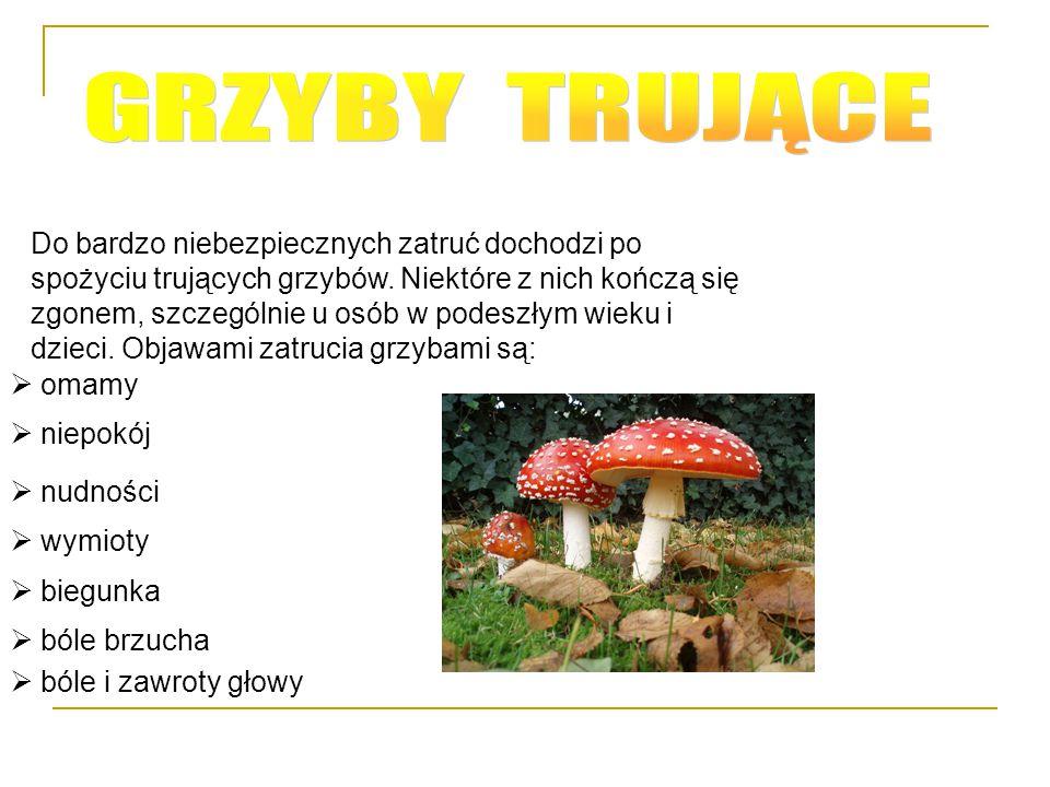 Do bardzo niebezpiecznych zatruć dochodzi po spożyciu trujących grzybów. Niektóre z nich kończą się zgonem, szczególnie u osób w podeszłym wieku i dzi