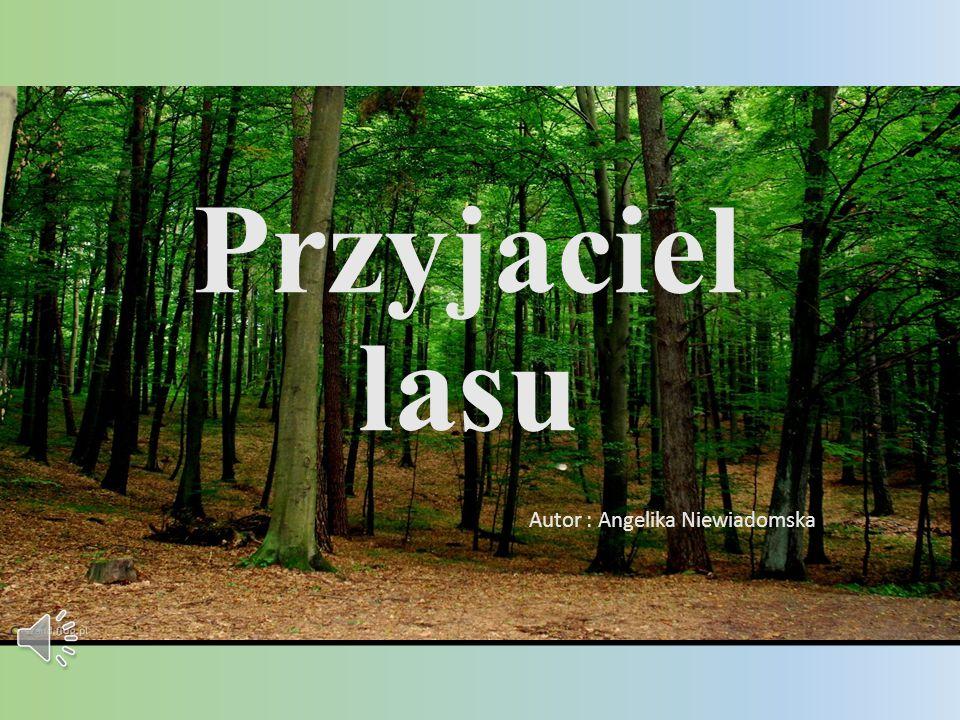 Przyjaciel lasu Autor : Angelika Niewiadomska