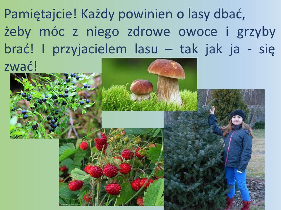 Pamiętajcie! Każdy powinien o lasy dbać, żeby móc z niego zdrowe owoce i grzyby brać! I przyjacielem lasu – tak jak ja - się zwać!