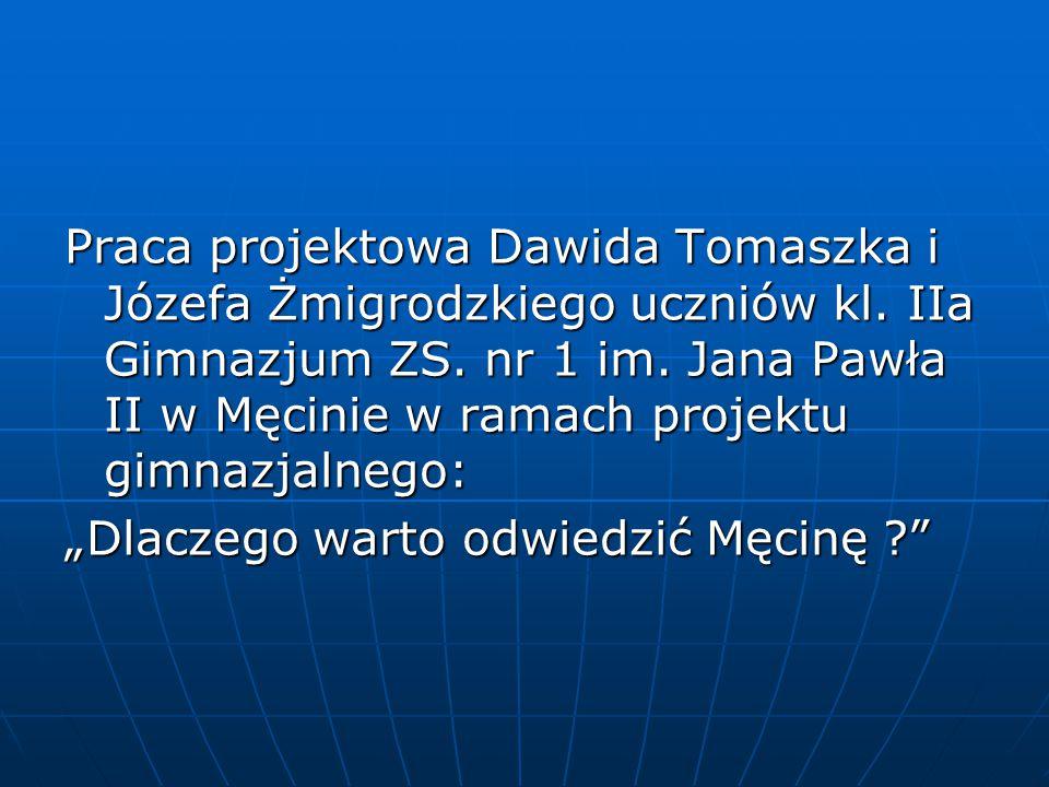 Praca projektowa Dawida Tomaszka i Józefa Żmigrodzkiego uczniów kl.