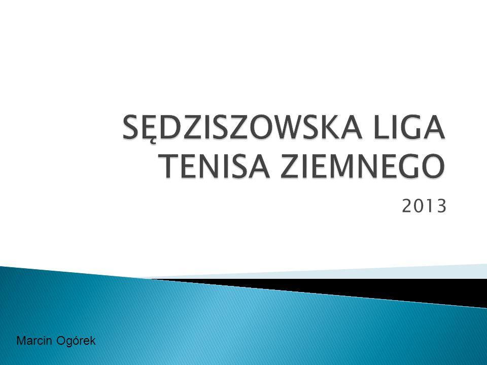 2013 Marcin Ogórek