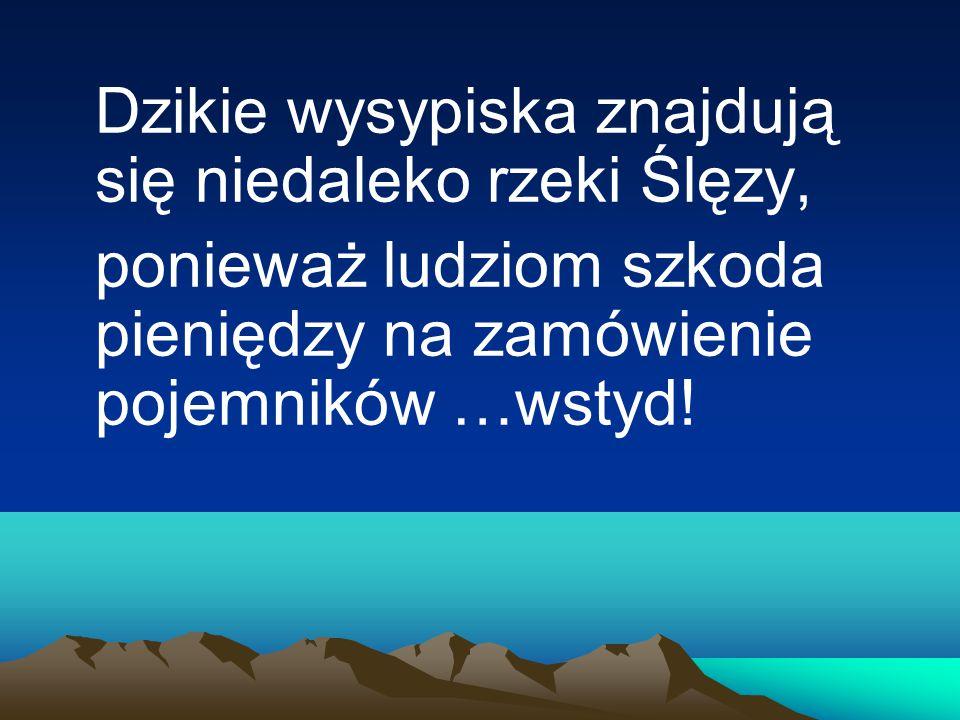 Dzikie wysypiska znajdują się niedaleko rzeki Ślęzy, ponieważ ludziom szkoda pieniędzy na zamówienie pojemników …wstyd!