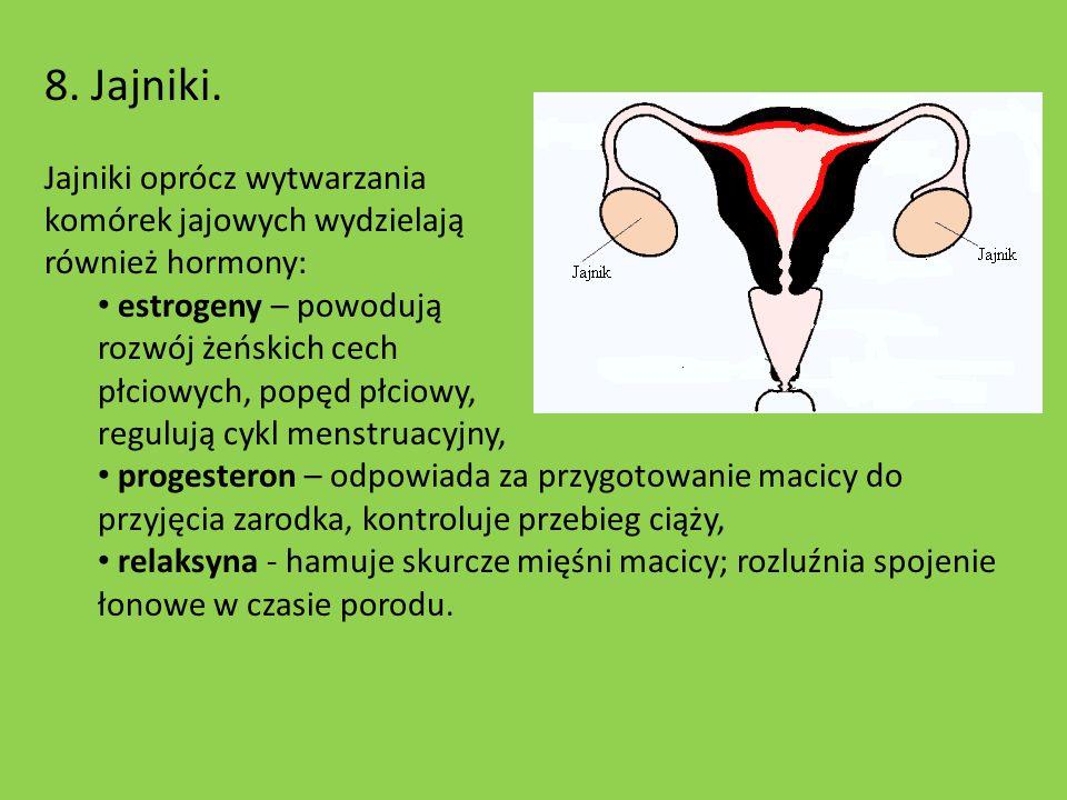 8. Jajniki. Jajniki oprócz wytwarzania komórek jajowych wydzielają również hormony: estrogeny – powodują rozwój żeńskich cech płciowych, popęd płciowy