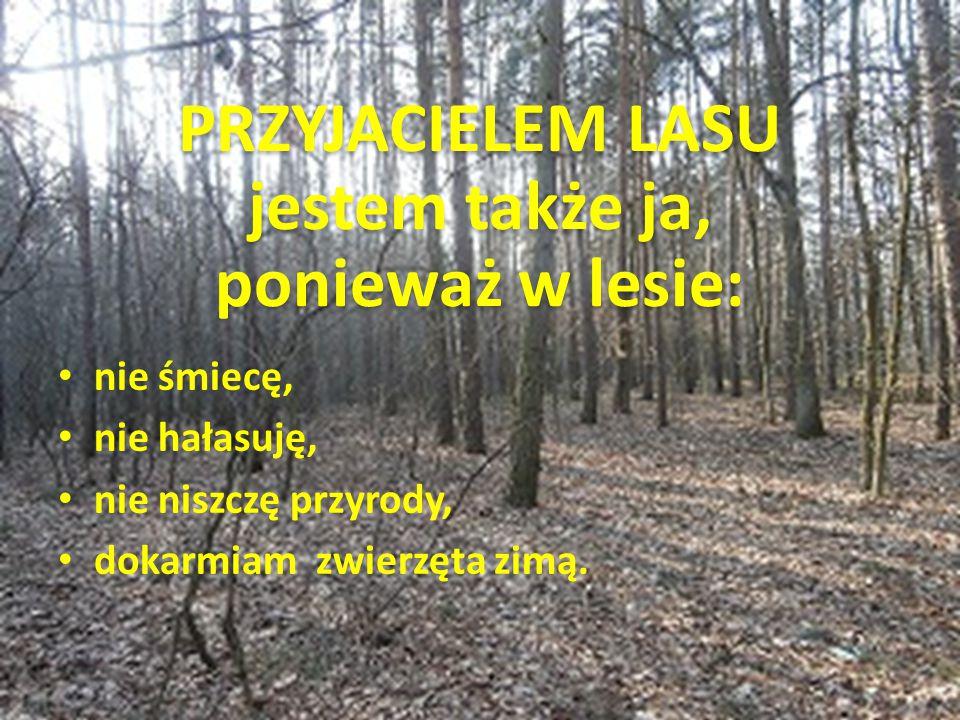 Niezastąpionymi przyjaciółmi lasu są leśnicy, którzy sprawują opiekę nad powierzonym obszarem.