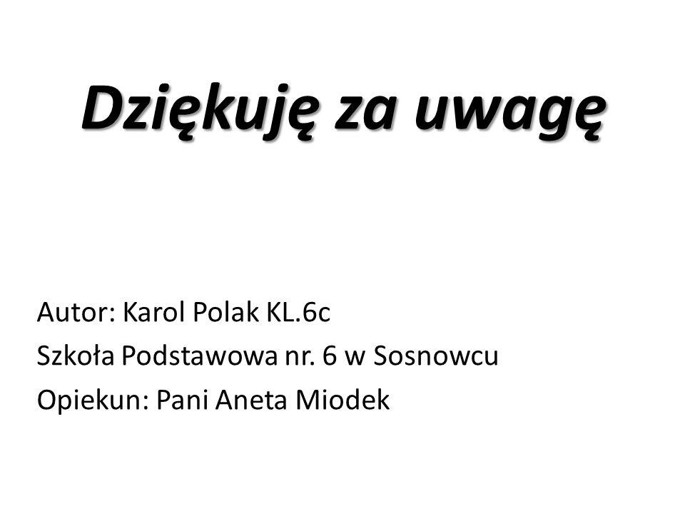 Dziękuję za uwagę Autor: Karol Polak KL.6c Szkoła Podstawowa nr. 6 w Sosnowcu Opiekun: Pani Aneta Miodek