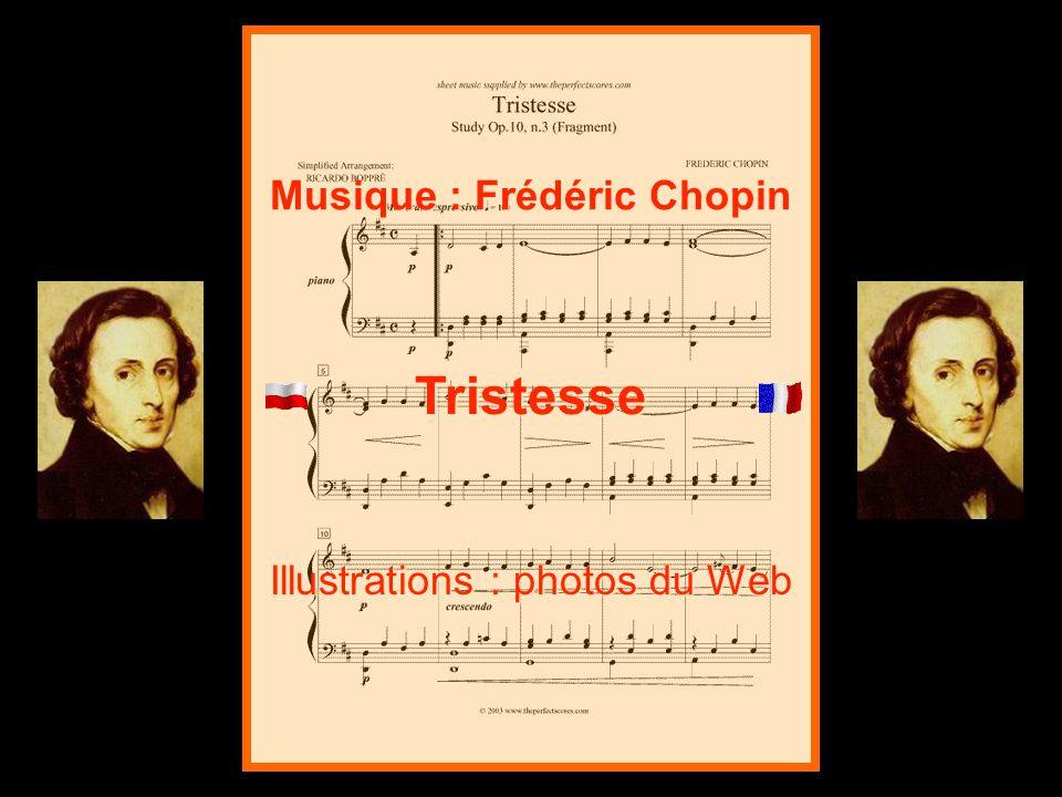 Tristesse Illustrations : photos du Web Musique : Frédéric Chopin