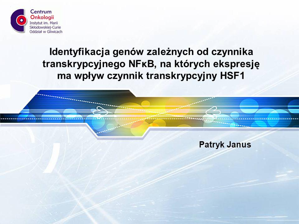 LOGO Identyfikacja genów zależnych od czynnika transkrypcyjnego NFκB, na których ekspresję ma wpływ czynnik transkrypcyjny HSF1 Patryk Janus