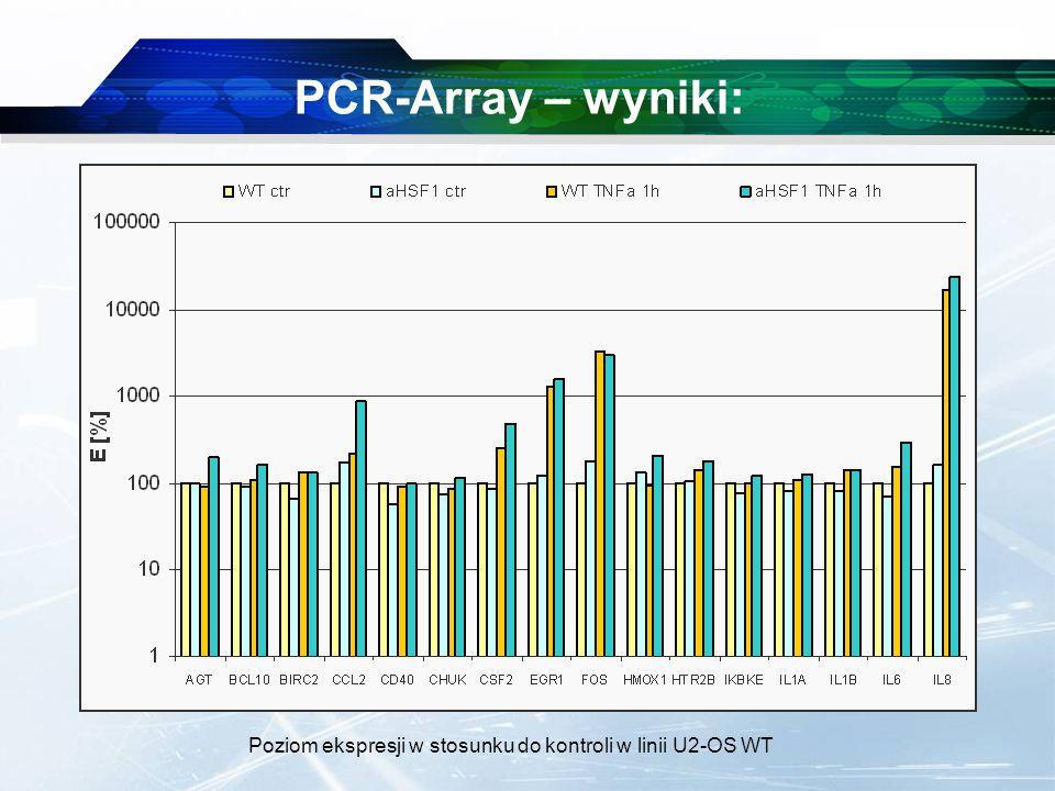 www.themegallery.com Company Logo PCR-Array – wyniki: Poziom ekspresji w stosunku do kontroli w linii U2-OS WT