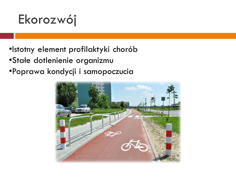 Ekorozwój Ogólnodostępność rowerów, przystępne ceny Szybsze przemieszczanie się w terenie- brak korków Rowerzyści nie utrudniają ruchu drogowego innym środkom transportu