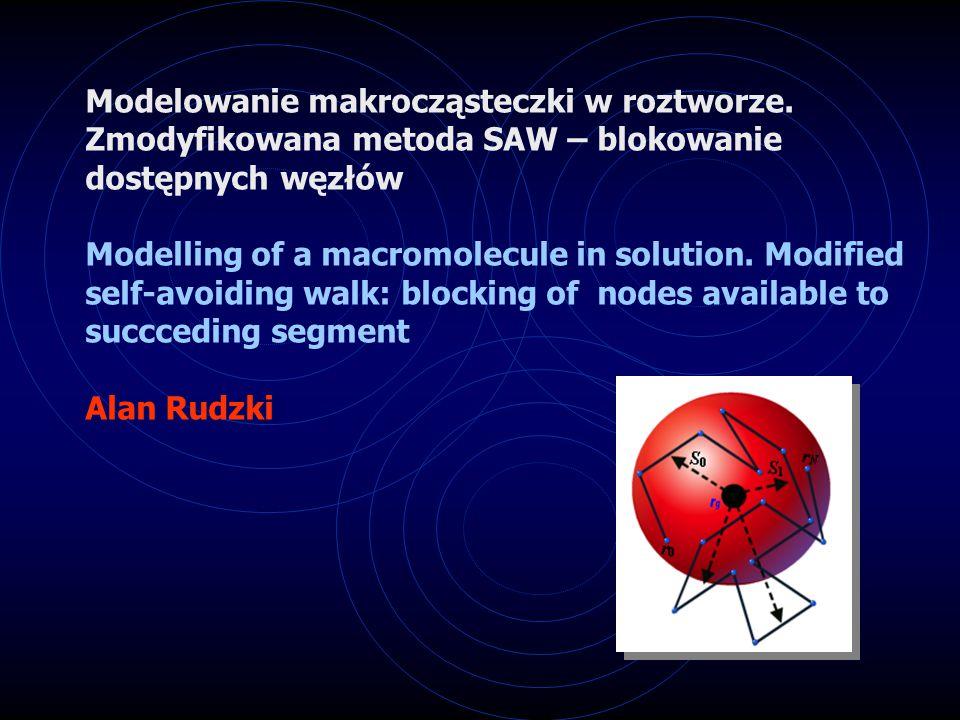 Modelowanie konformacji makrocząsteczki w pobliżu powierzchni niejednorodnej geometrycznie (fraktalnej)