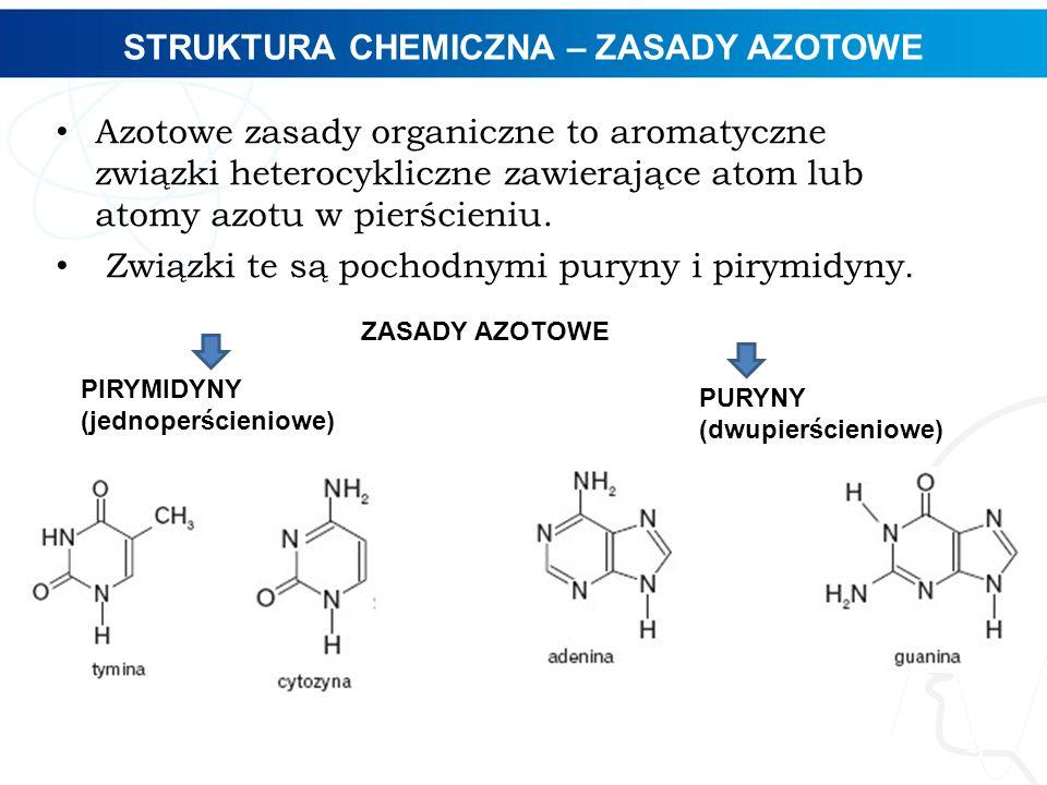 STRUKTURA CHEMICZNA – ZASADY AZOTOWE 9 Azotowe zasady organiczne to aromatyczne związki heterocykliczne zawierające atom lub atomy azotu w pierścieniu