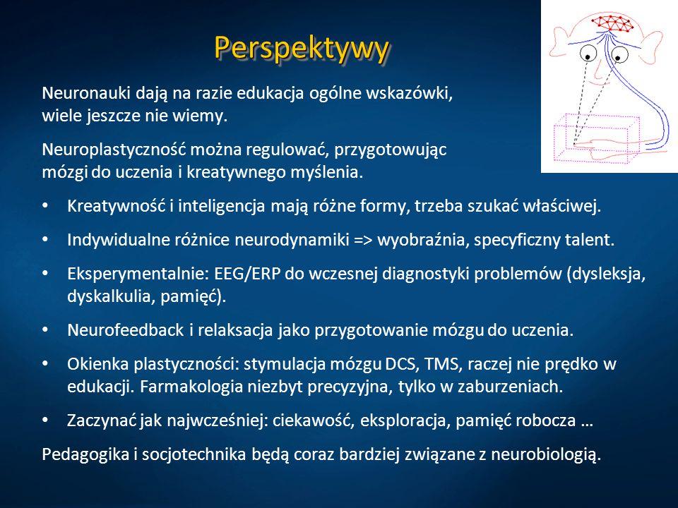 PerspektywyPerspektywy Neuronauki dają na razie edukacja ogólne wskazówki, wiele jeszcze nie wiemy. Neuroplastyczność można regulować, przygotowując m