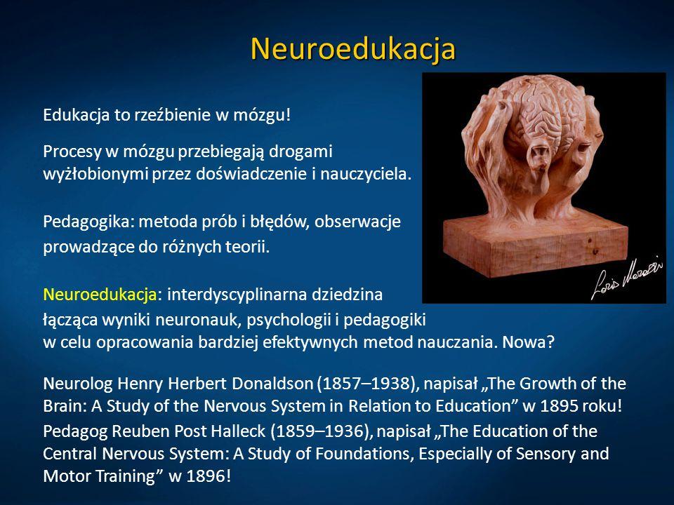 Neuroedukacja Edukacja to rzeźbienie w mózgu! Procesy w mózgu przebiegają drogami wyżłobionymi przez doświadczenie i nauczyciela. Pedagogika: metoda p
