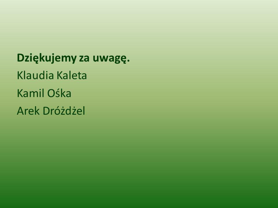 Dziękujemy za uwagę. Klaudia Kaleta Kamil Ośka Arek Dróżdżel