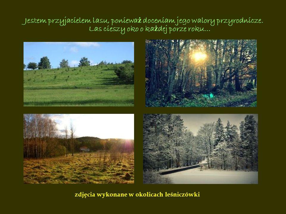 Jestem przyjacielem lasu, poniewa ż doceniam jego walory przyrodnicze. Las cieszy oko o ka ż dej porze roku… zdjęcia wykonane w okolicach leśniczówki