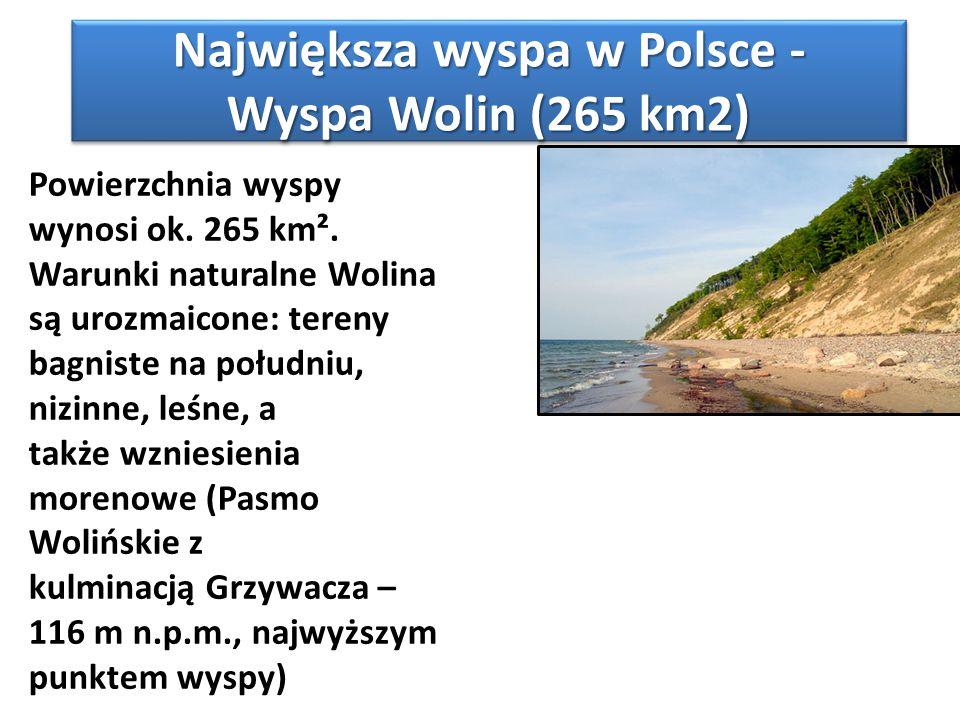 Największa wyspa w Polsce - Wyspa Wolin (265 km2) Powierzchnia wyspy wynosi ok. 265 km². Warunki naturalne Wolina są urozmaicone: tereny bagniste na p