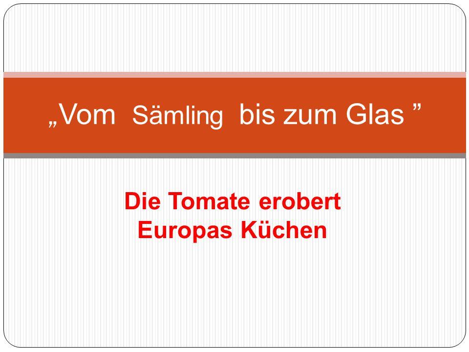 """Die Tomate erobert Europas Küchen """" Vom Sämling bis zum Glas"""