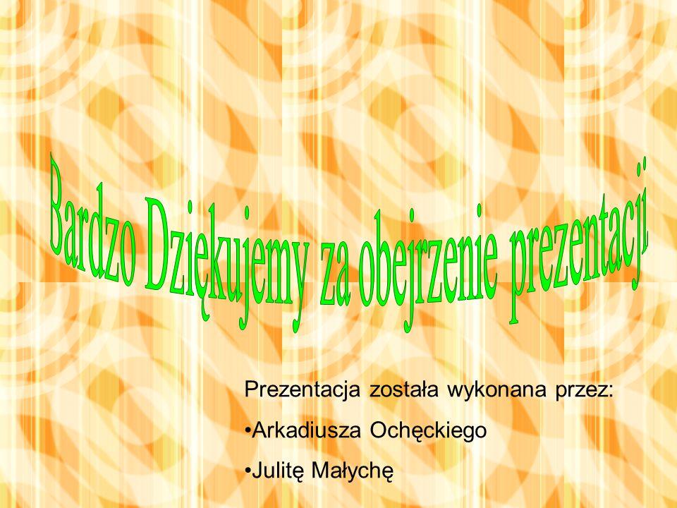 Prezentacja została wykonana przez: Arkadiusza Ochęckiego Julitę Małychę